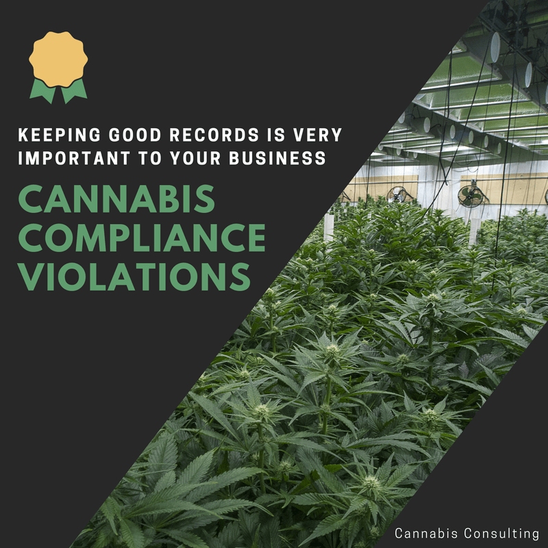 common cannabis compliance violations
