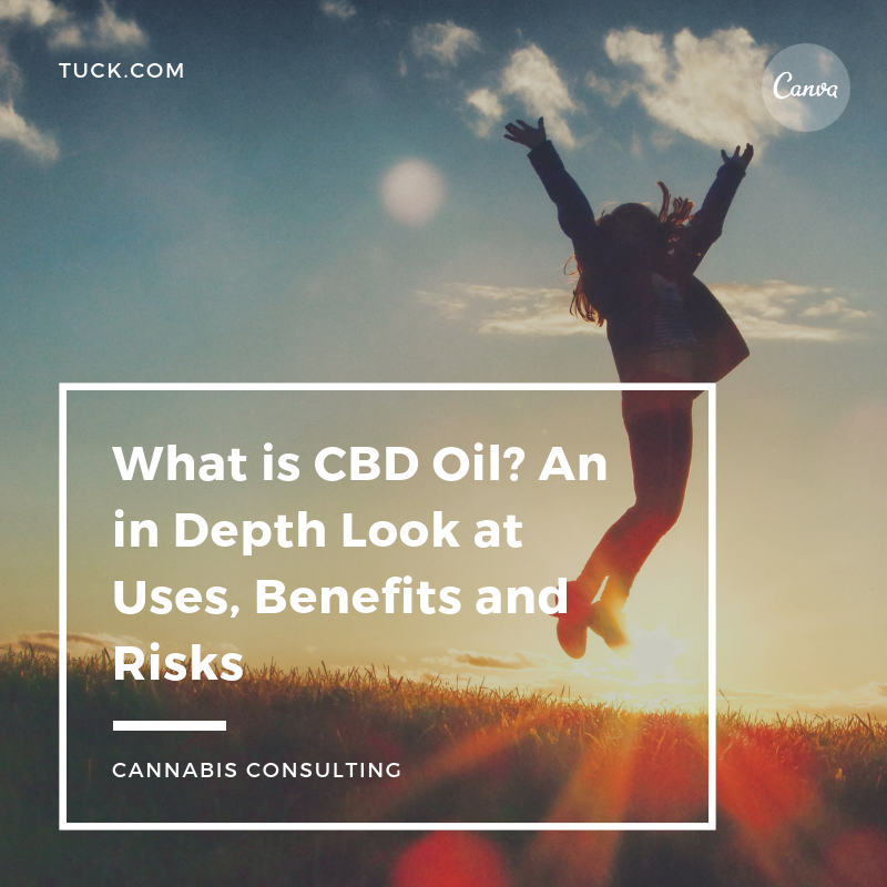 What is CBD Oil? An in Depth Look at Uses, Benefits and